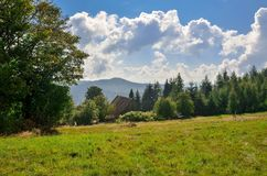 Beautiful summer landscape. royalty free stock images