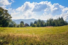 Beautiful summer landscape. stock images