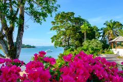 Beautiful summer landscape with flowers, trees and sea view with boat on water stock image
