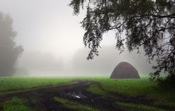 Beautiful summer landscape in foggy morning with haystack on a g Royalty Free Stock Image