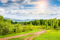 Beautiful summer landscape with forest and mountains Royalty Free Stock Photography