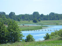 Beautiful summer landscape. Forest, nature, river and bridge across the river.  In the distance, a horse grazes Stock Image