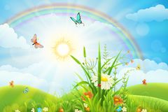 Beautiful summer landscape. Summer landscape with green grass, flowers, rainbow and sun Stock Images