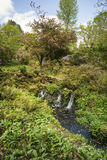 Beautiful Summer landscape image of brook flowing over rocks in Royalty Free Stock Photos
