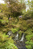 Beautiful Summer landscape image of brook flowing over rocks in Royalty Free Stock Photo