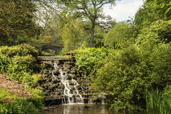 Beautiful Summer landscape image of brook flowing over rocks in Royalty Free Stock Images