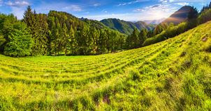 Beautiful summer landscape in the italian alps Royalty Free Stock Photos