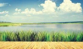 Beautiful summer landscape at a lake Royalty Free Stock Image