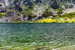 Beautiful summer landscape with lake Calcescu in Parang  mountai Royalty Free Stock Photos