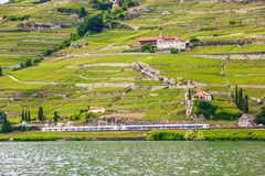 Beautiful Summer landscape of Lake Geneva, Lavaux vineyard terraces and Alps with trains going by, Swiss Riviera, Switzerland Royalty Free Stock Photos