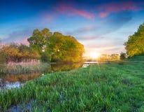Beautiful summer landscape on the lake. Royalty Free Stock Image