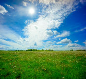 Beautiful summer landscape. Of meadows with trees. Lithuania Stock Images