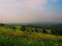 Beautiful summer landscape morning mist in the field royalty free stock image