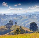 Beautiful summer landscape in mountain village Stock Photos