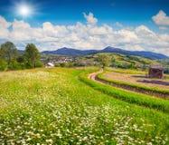 Beautiful summer landscape in the mountain village Stock Photos