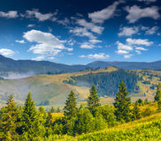 Beautiful summer landscape in mountains. Royalty Free Stock Photo