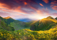 Beautiful summer landscape in mountains Royalty Free Stock Image