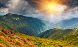 Beautiful summer landscape in the mountains. Panoramic view of the beautiful summer landscape in the mountains Stock Images