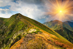 Beautiful summer landscape in the mountains. Panoramic view of the beautiful summer landscape in the mountains Royalty Free Stock Photos