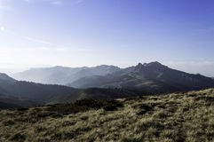 Beautiful summer landscape in the mountains with the sun at dawn Stock Photos