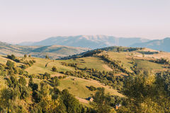 Beautiful summer landscape in the mountains at sunny day Stock Image