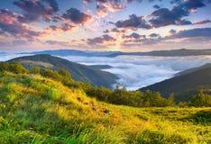 Beautiful summer landscape Royalty Free Stock Photo