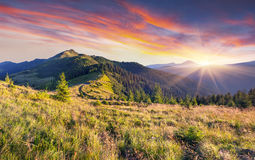 Beautiful summer landscape in mountains. Stock Photo