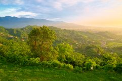 Beautiful summer landscape in the mountains. Royalty Free Stock Image