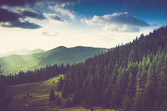 Beautiful summer landscape in the mountains. Beautiful summer landscape in the mountains at sunshine Royalty Free Stock Photos