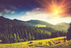 Beautiful summer landscape in the mountains. Beautiful summer landscape in the mountains at sunshine Stock Photography