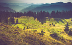 Beautiful summer landscape in the mountains. Beautiful summer landscape in the mountains at sunshine Royalty Free Stock Photo