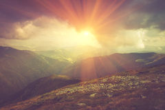 Beautiful summer landscape in the mountains at sunshine. stock photos
