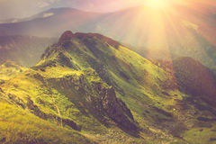 Beautiful summer landscape in the mountains at sunshine. Royalty Free Stock Photography