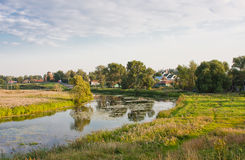 Beautiful summer landscape at a pond Stock Photography