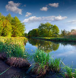 Beautiful summer landscape on river Royalty Free Stock Image