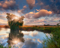 Beautiful summer landscape on the river Royalty Free Stock Photos