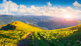 Beautiful summer landscape with road in mountains Royalty Free Stock Photos