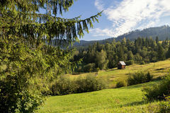 Beautiful summer landscape of the romanian village Royalty Free Stock Image