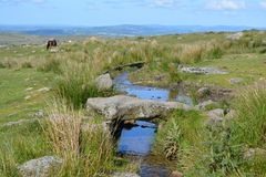 Beautiful summer landscape in rural Devon, UK stock photos