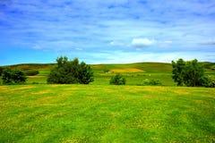 Beautiful summer landscape, Scotland Stock Photos