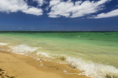 Beautiful summer landscape with the sea Stock Photos