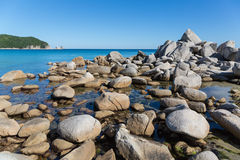 Beautiful summer landscape of sea coast. Stock Images