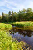 Beautiful summer landscape with small tranquil river Stock Image