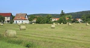 Beautiful summer landscape of suburb Prague Stock Photo