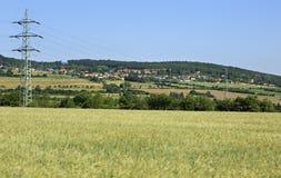 Beautiful summer landscape of suburb Prague Royalty Free Stock Photo