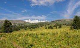 Beautiful summer landscape on top of Altai Krai mountains. Beautiful summer landscape on top of the Altai Krai mountains Stock Images