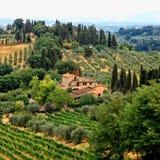 Beautiful summer landscape in Tuscany, Italy royalty free stock photo