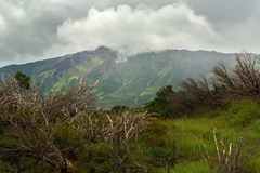Beautiful summer landscape in the Uzon Caldera. Kronotsky Nature Reserve Royalty Free Stock Images