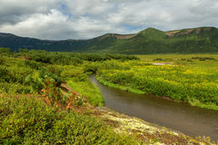 Beautiful summer landscape in the Uzon Caldera. Kronotsky Nature Reserve Stock Image