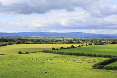 Beautiful summer landscape. View from the Rock of Royalty Free Stock Photos